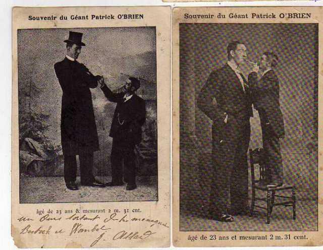 circus freak tallest man  Irish Giant