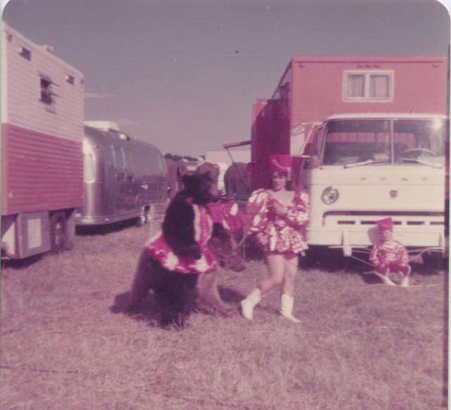 circus vargus 18