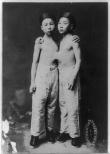 korean 1903