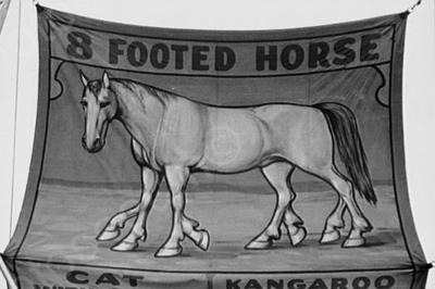 sideshow  8 footed horse